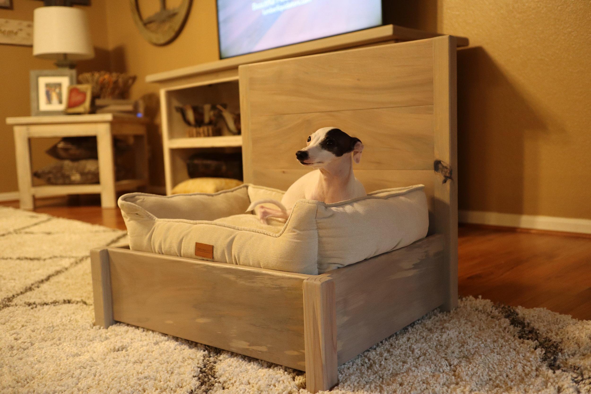 greyhound puppy bed.JPG
