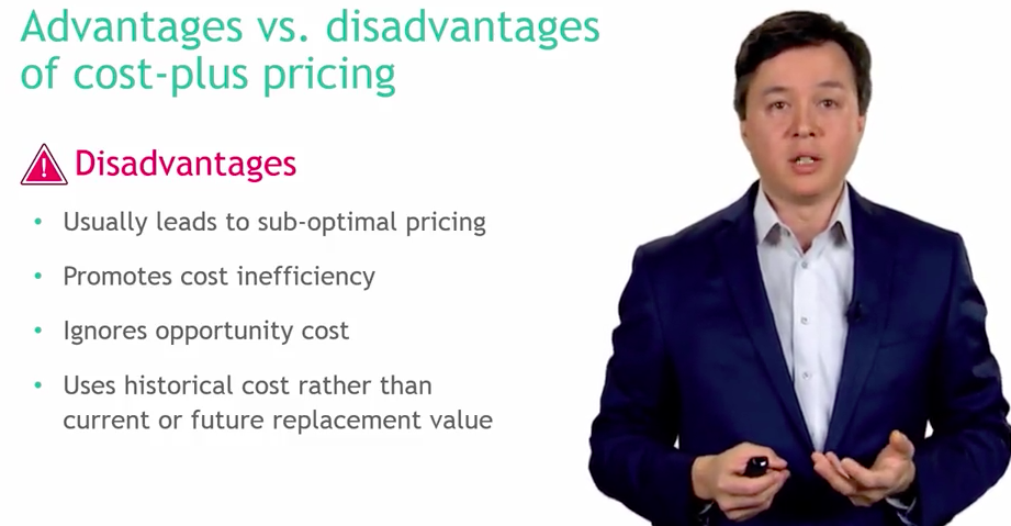 Review Pricing Strategy Optimization