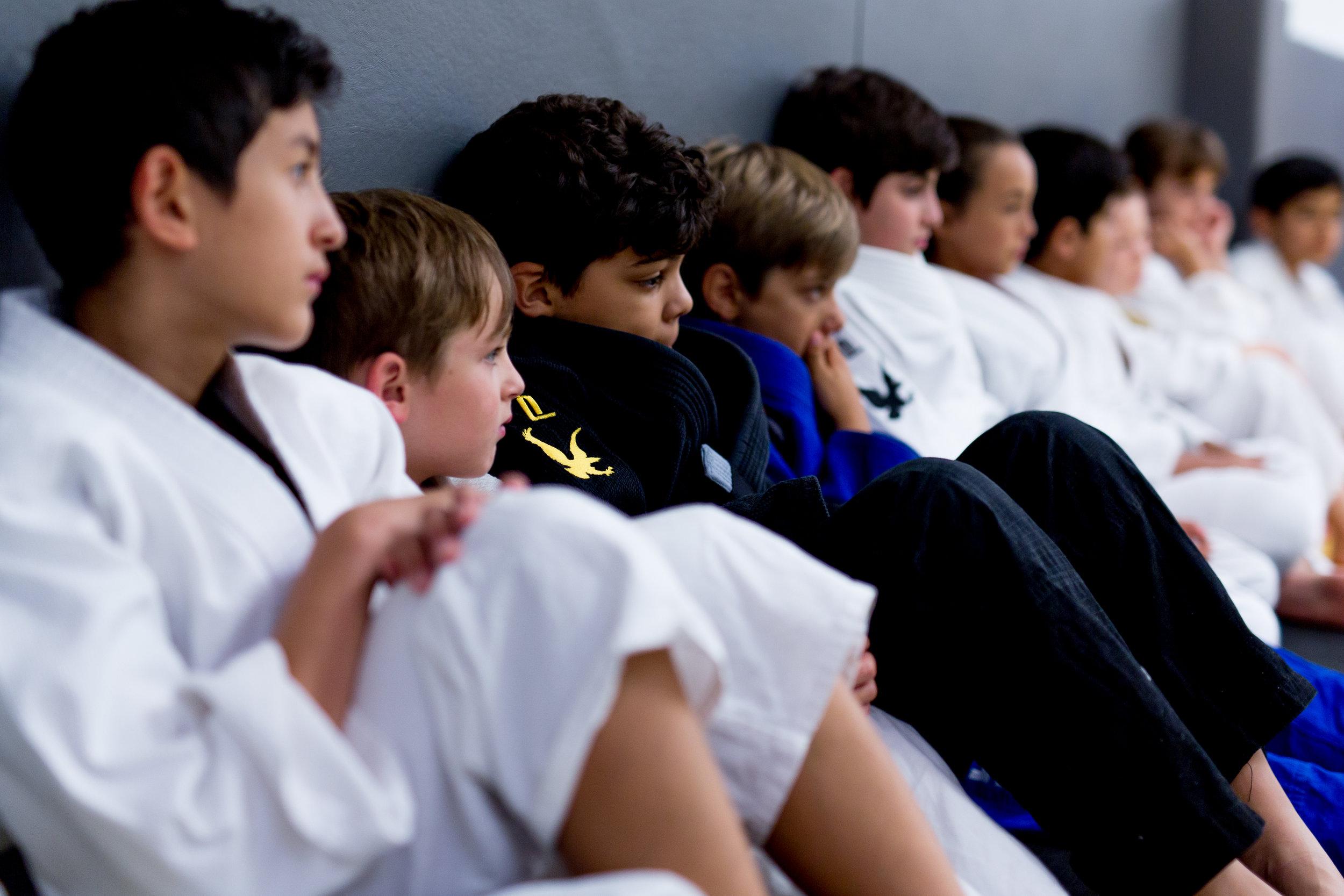 Martial arts kids lewes