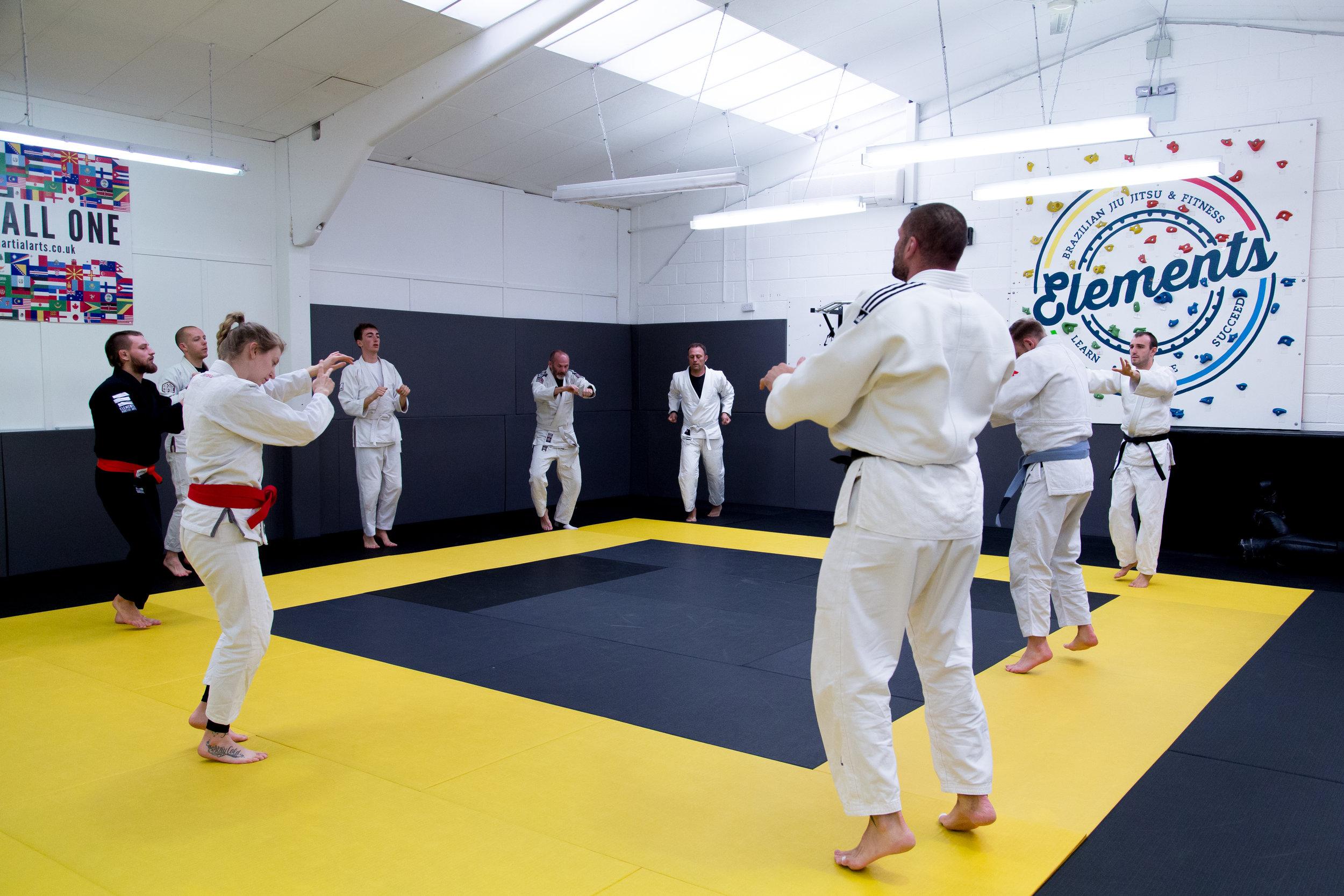 Elements Lewes Martial Arts Adults