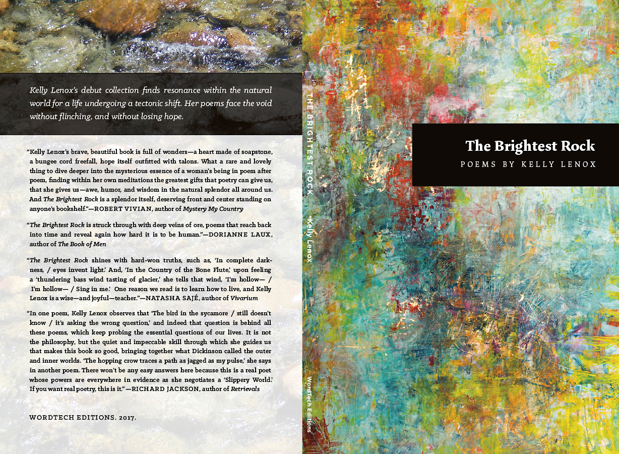 Cover design. (we also designed and typeset the interior)