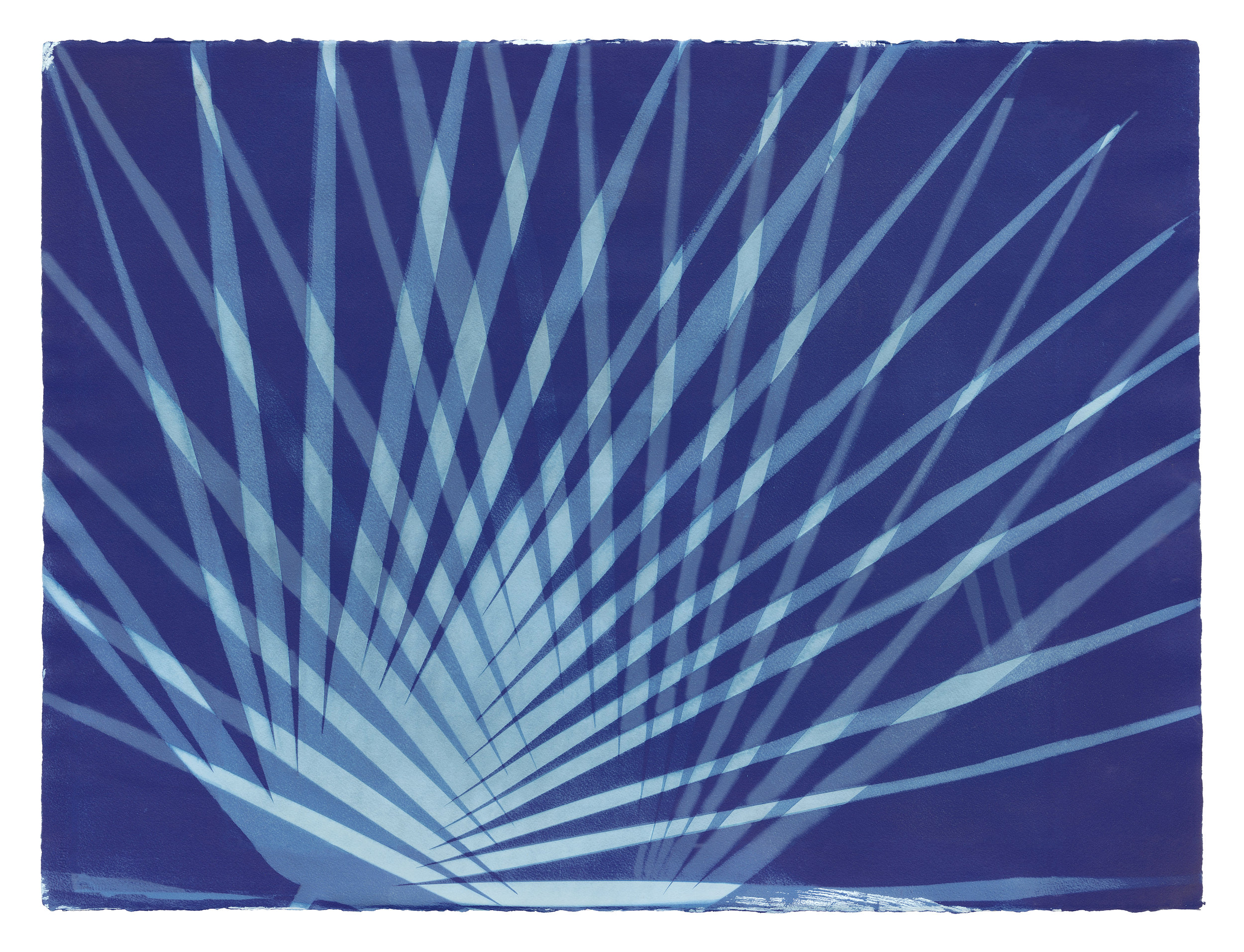 Erica Gimson. Textile cyanotype print. Erica had a two person exhibit here in March/April along with her husband Sean Livingstone (paintings) and we are delighted they both left behind a small number of works