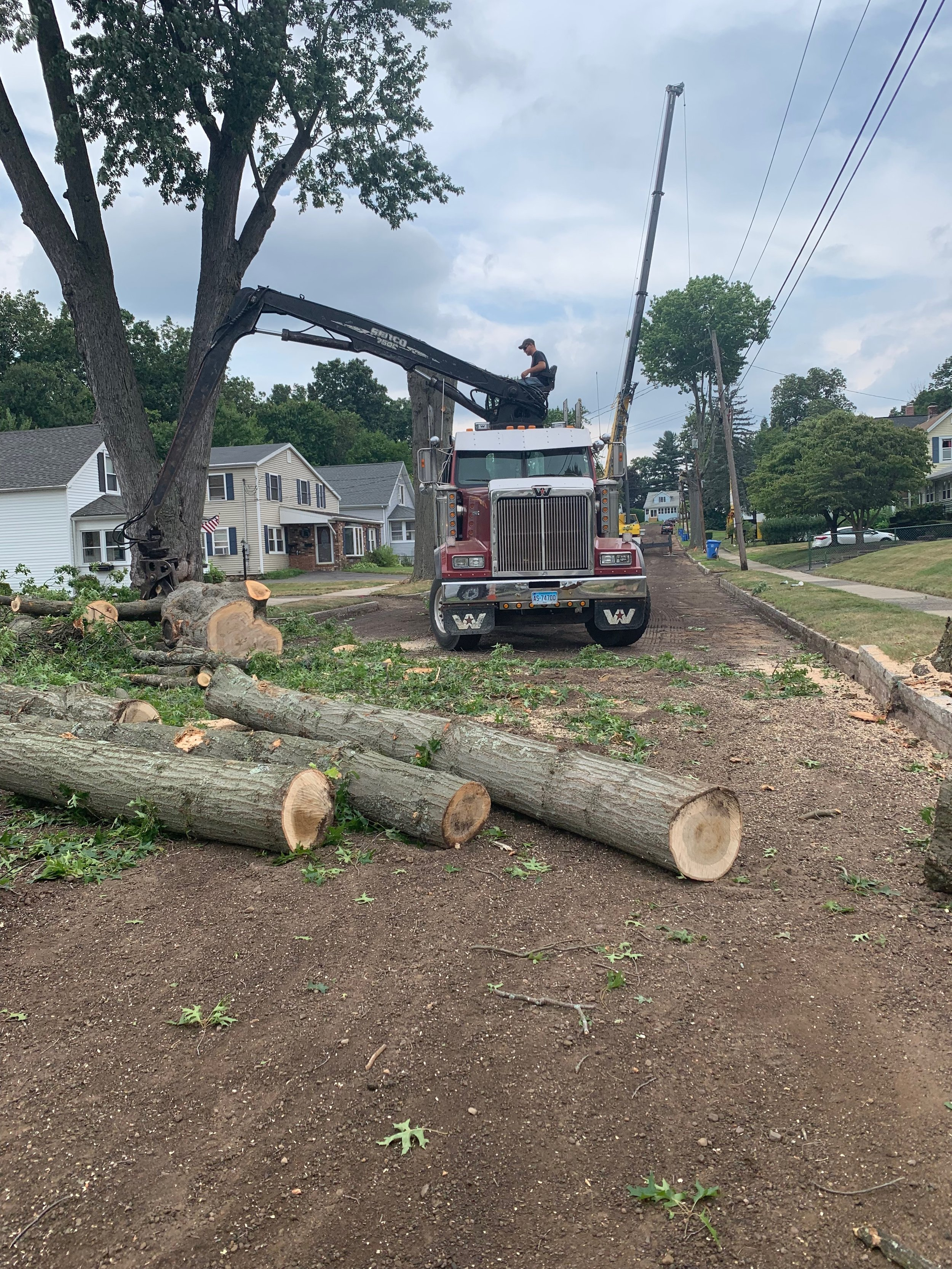 August, 2019 - Tree trimming and removal near power lines