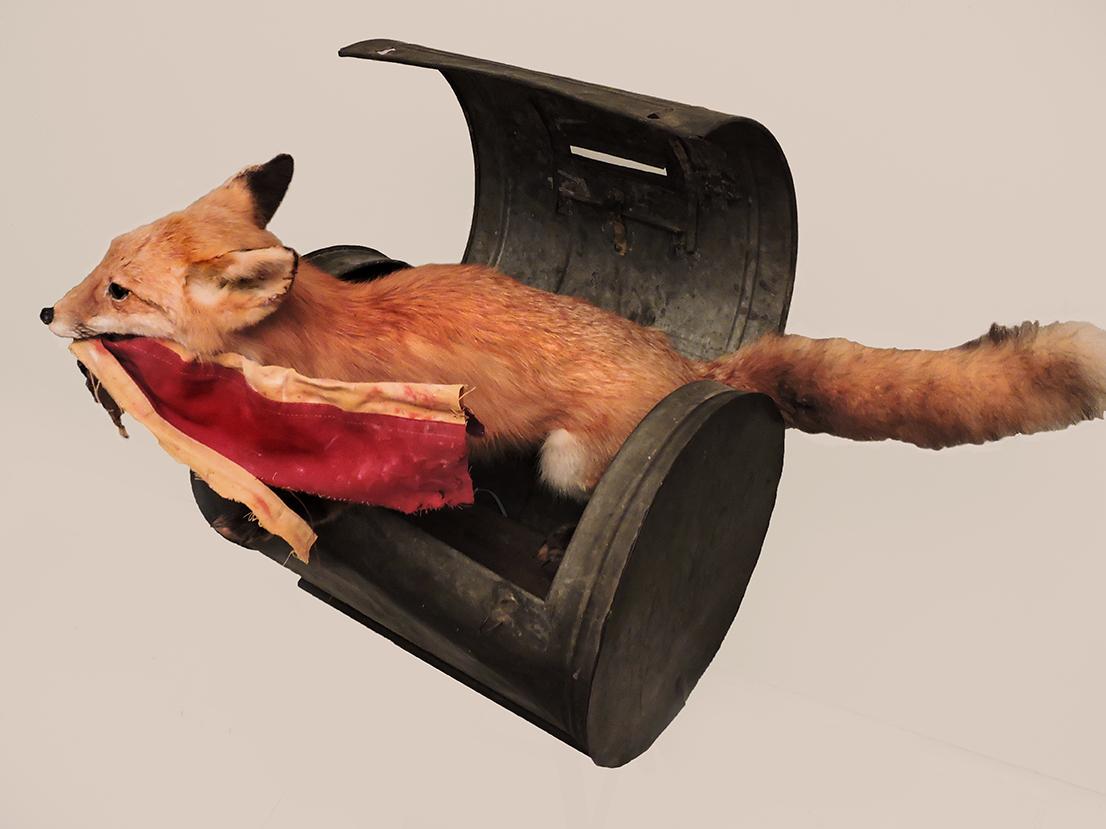 Fox In A Ballot Box