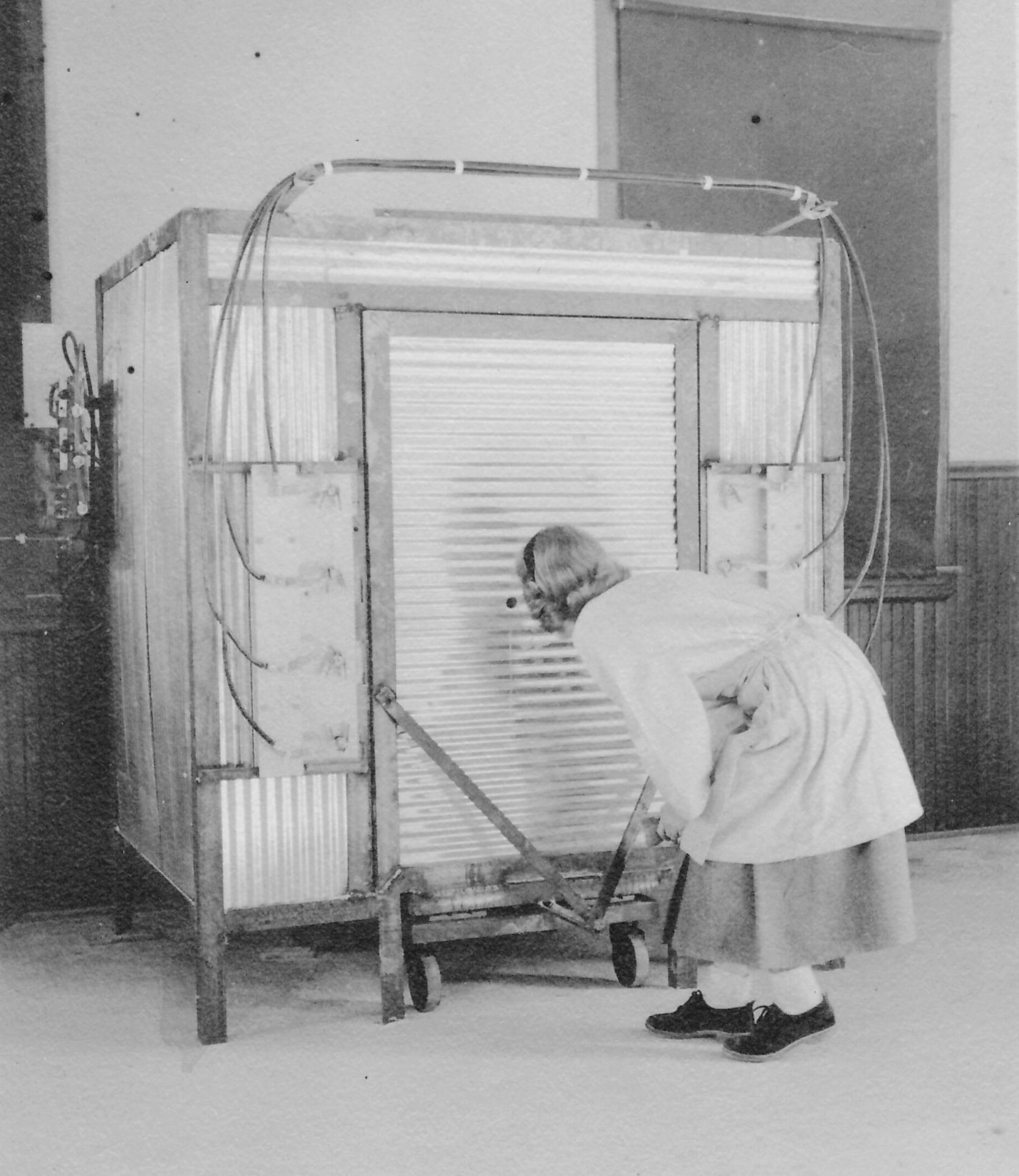 Elizabeth Greene checks the cones inside the kiln circa 1952.