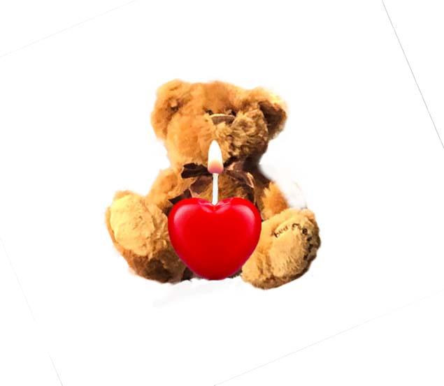 bear heart.jpg