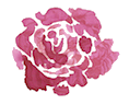 transparent flower copy.png