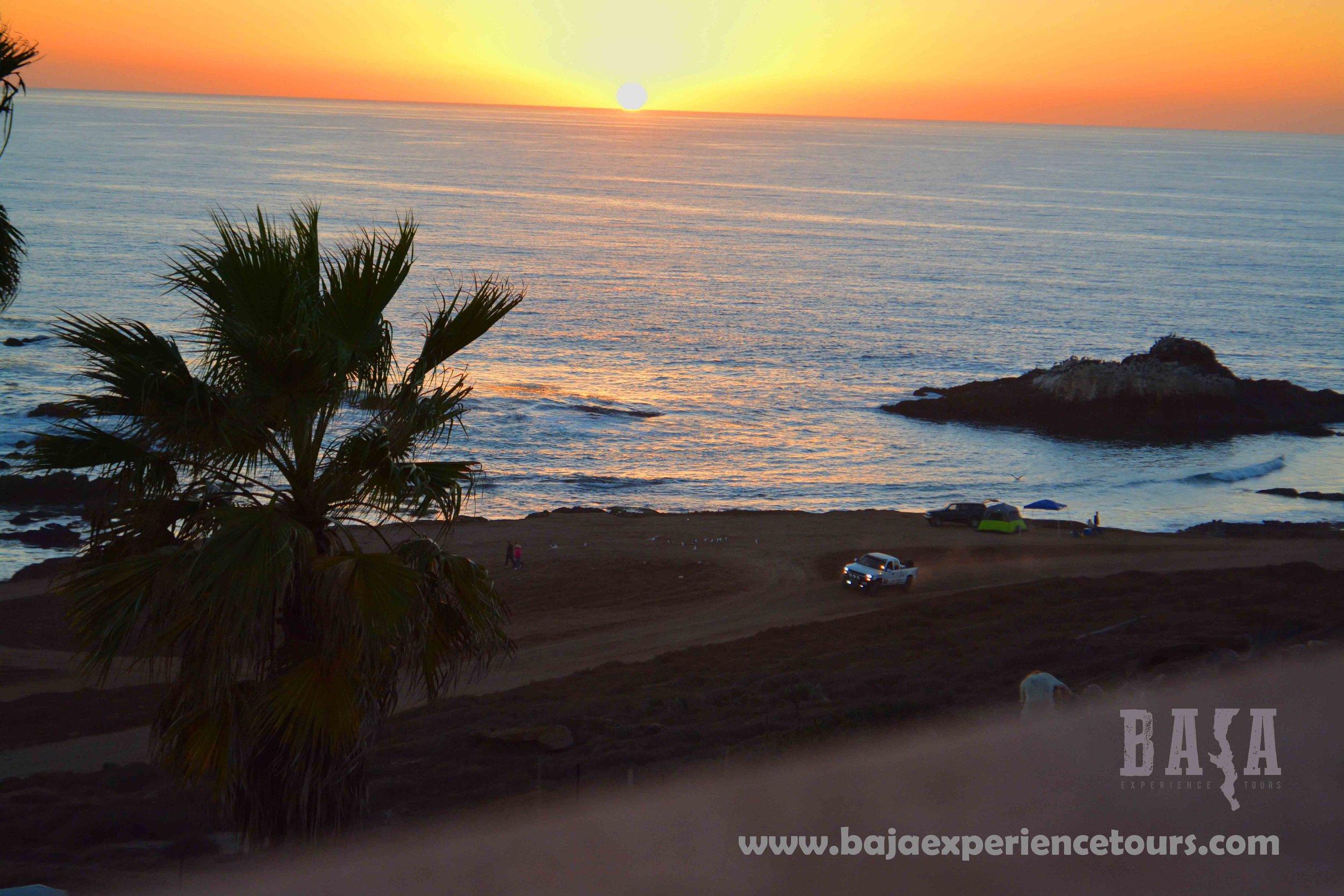 sunset_palm_baja_1000.jpg