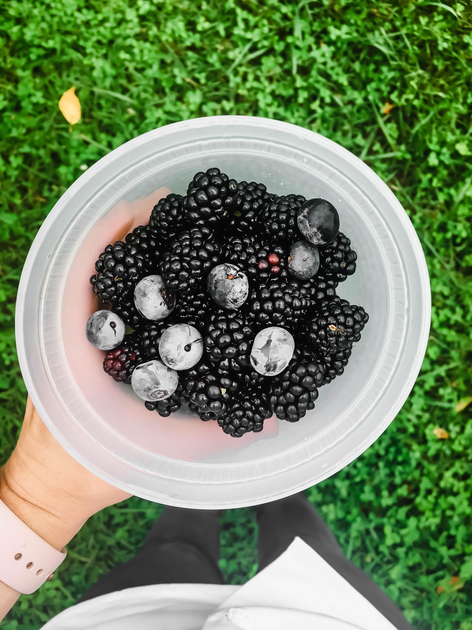 GardenBerryEdit.jpg