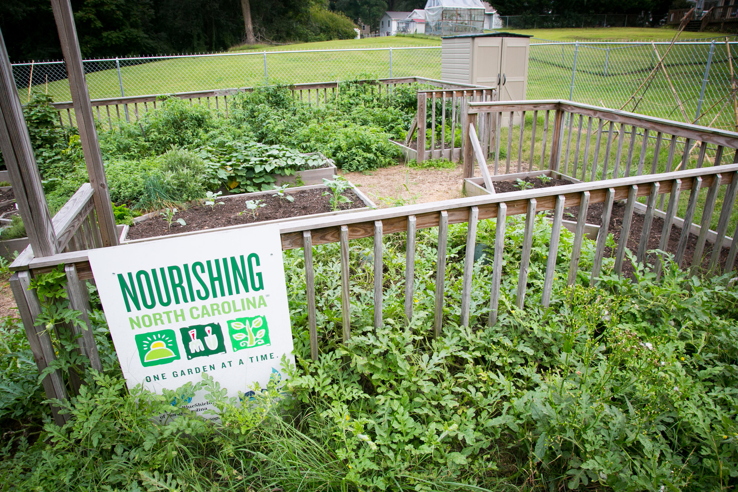 Thomasville Parks & Recreation run community garden with Thomasville City Schools.
