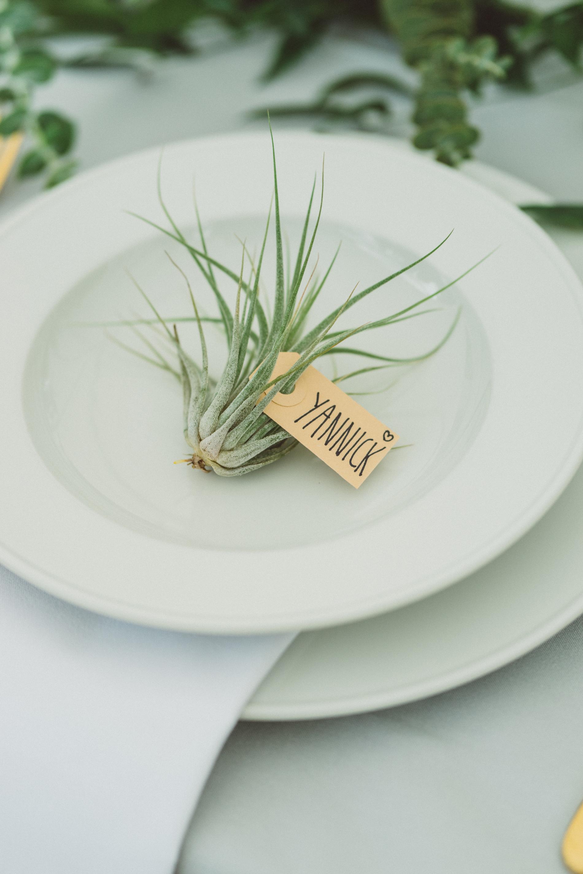 sofie-yannick-wedding-146.jpg