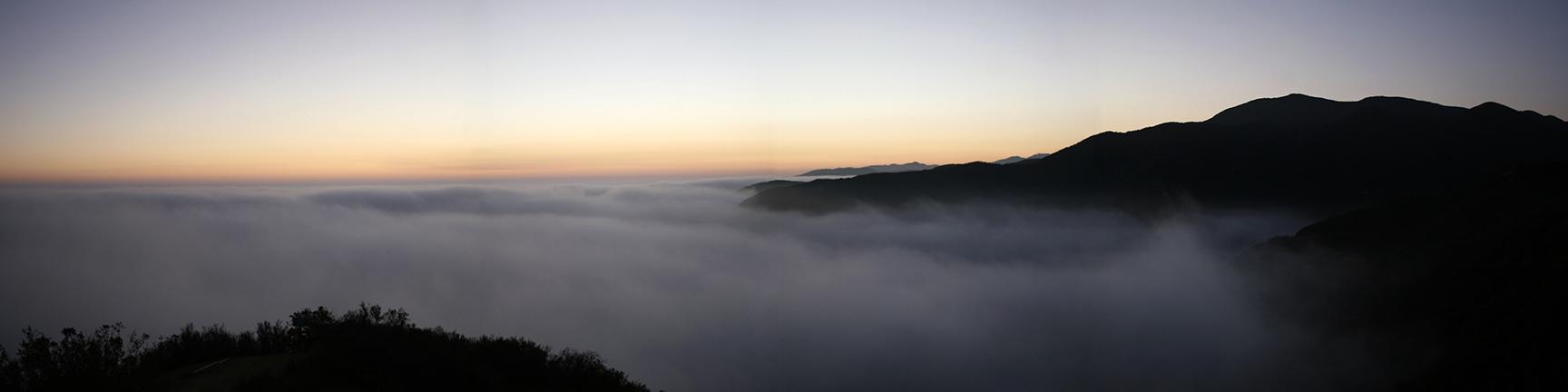 fog will rogers.jpg