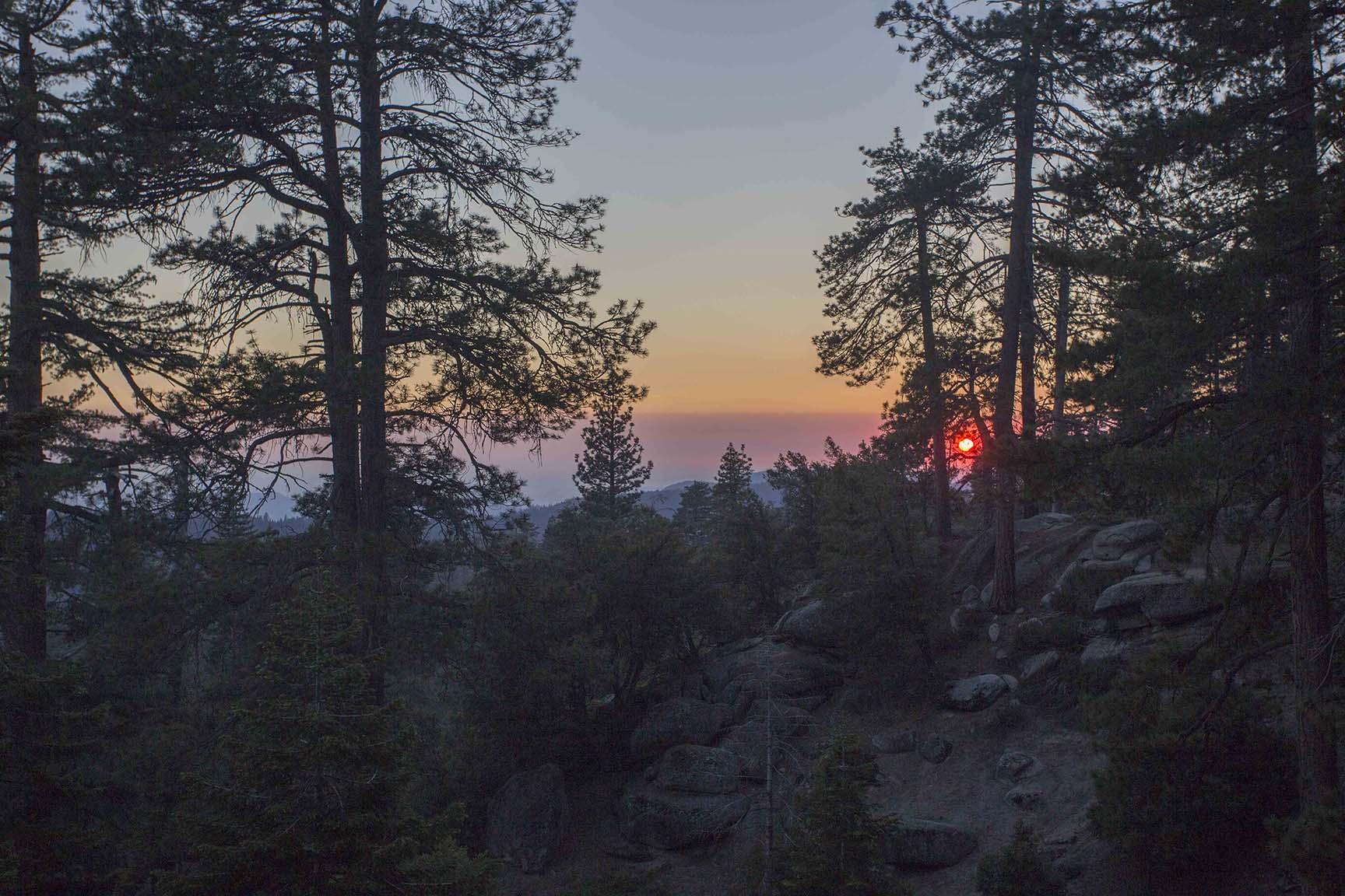 06212017 Sequoia_18.jpg