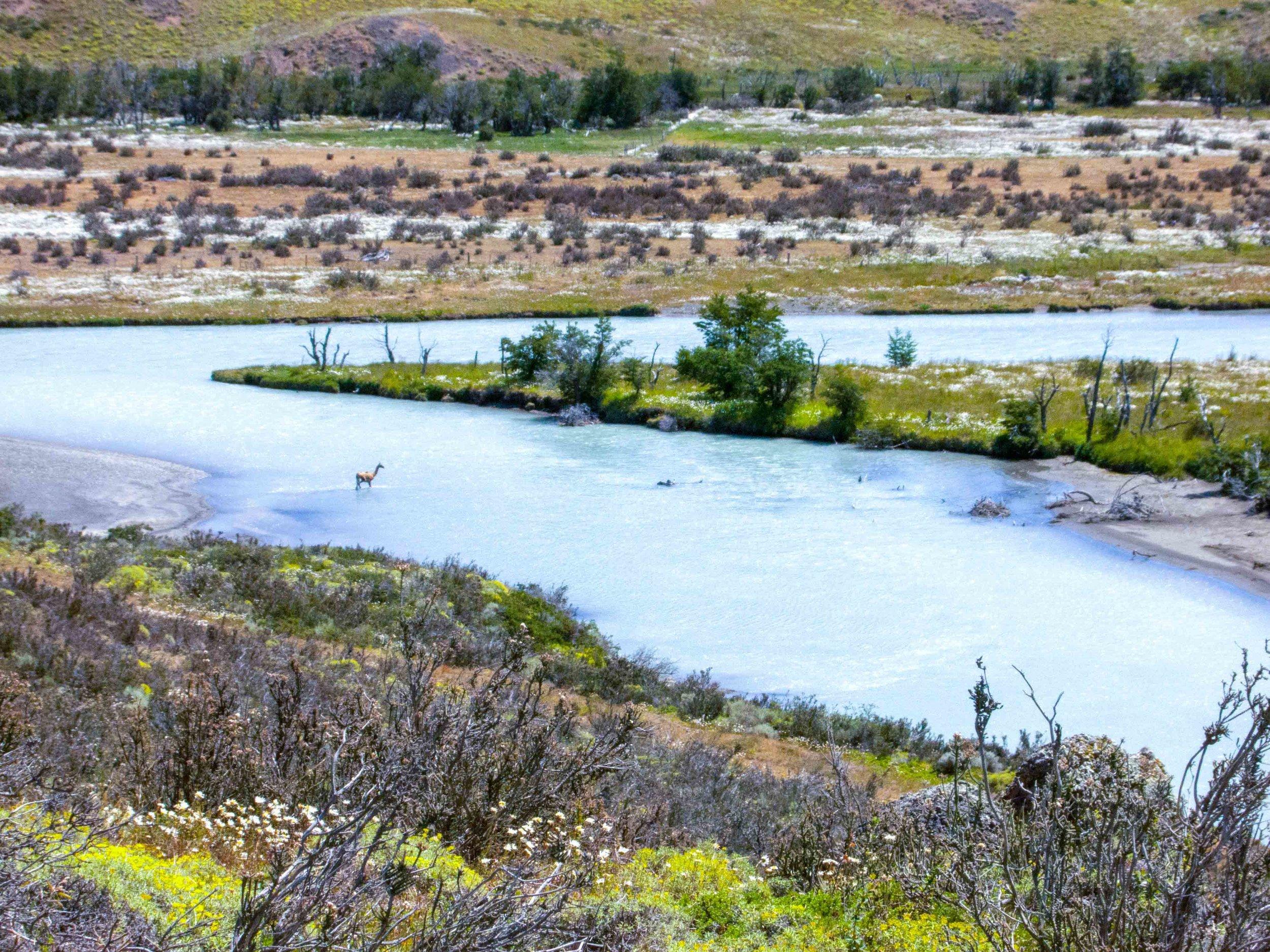 Patagonia WebSized-137.jpg