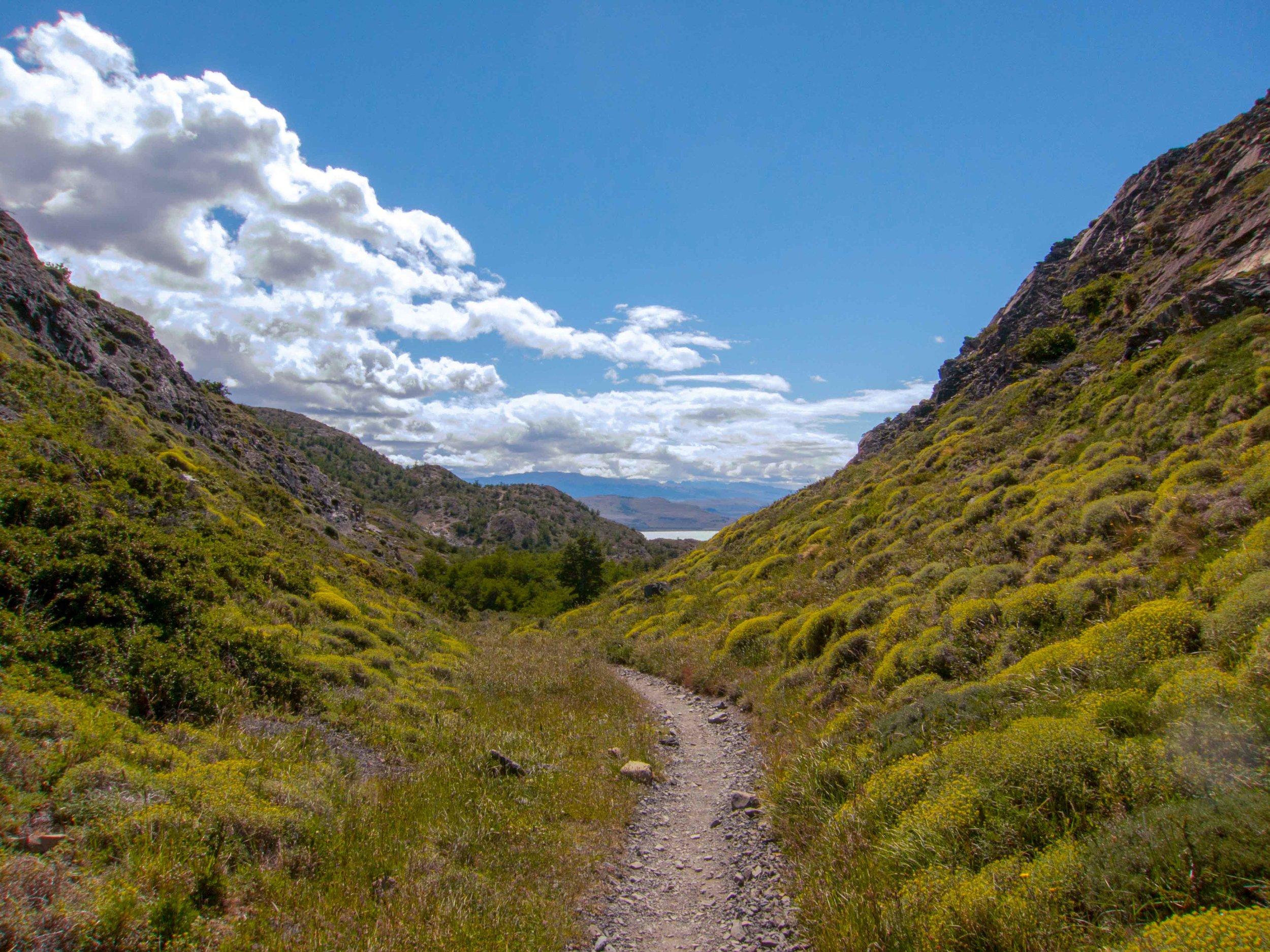 Patagonia WebSized-100.jpg