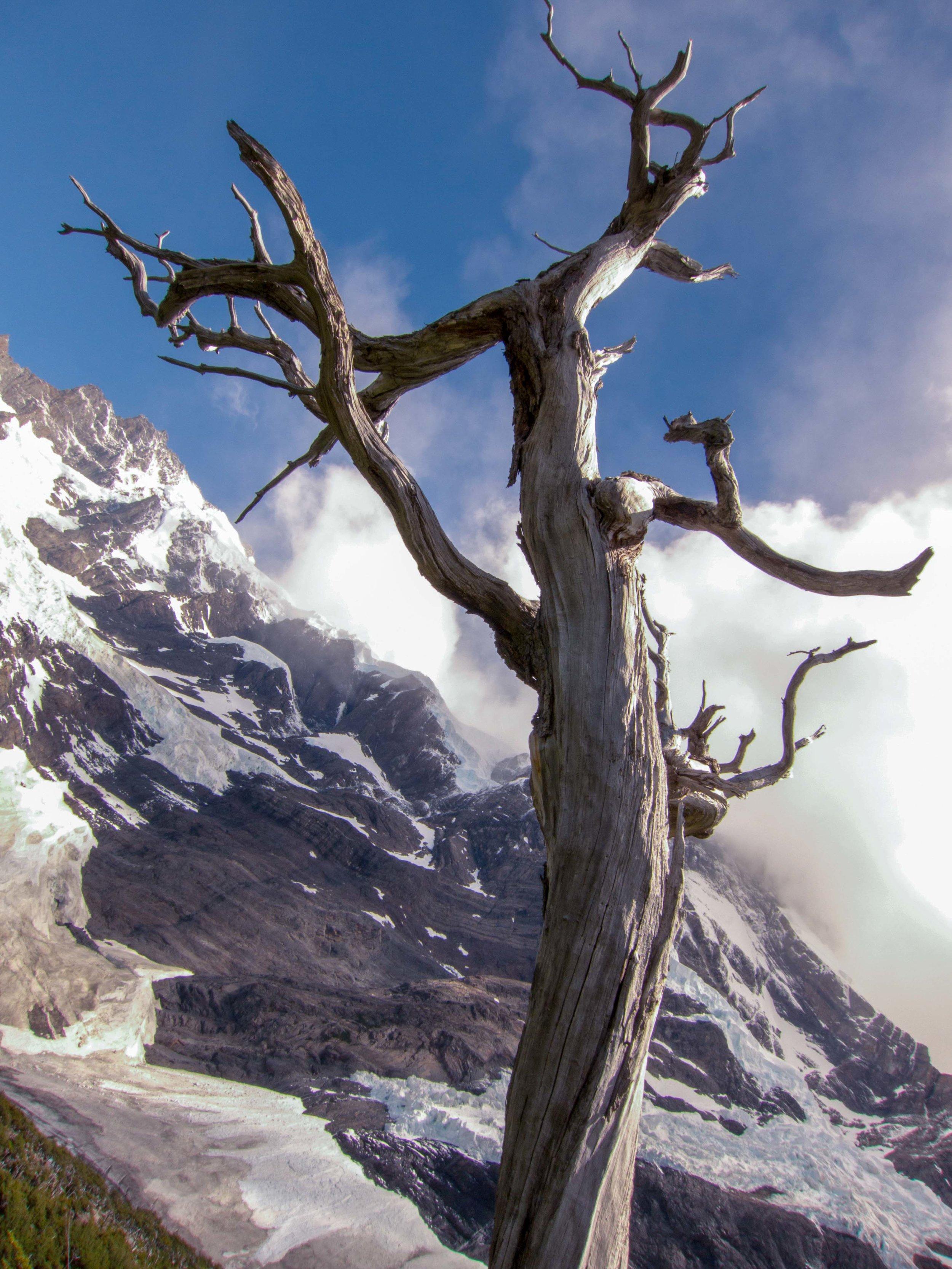 Patagonia WebSized-76.jpg