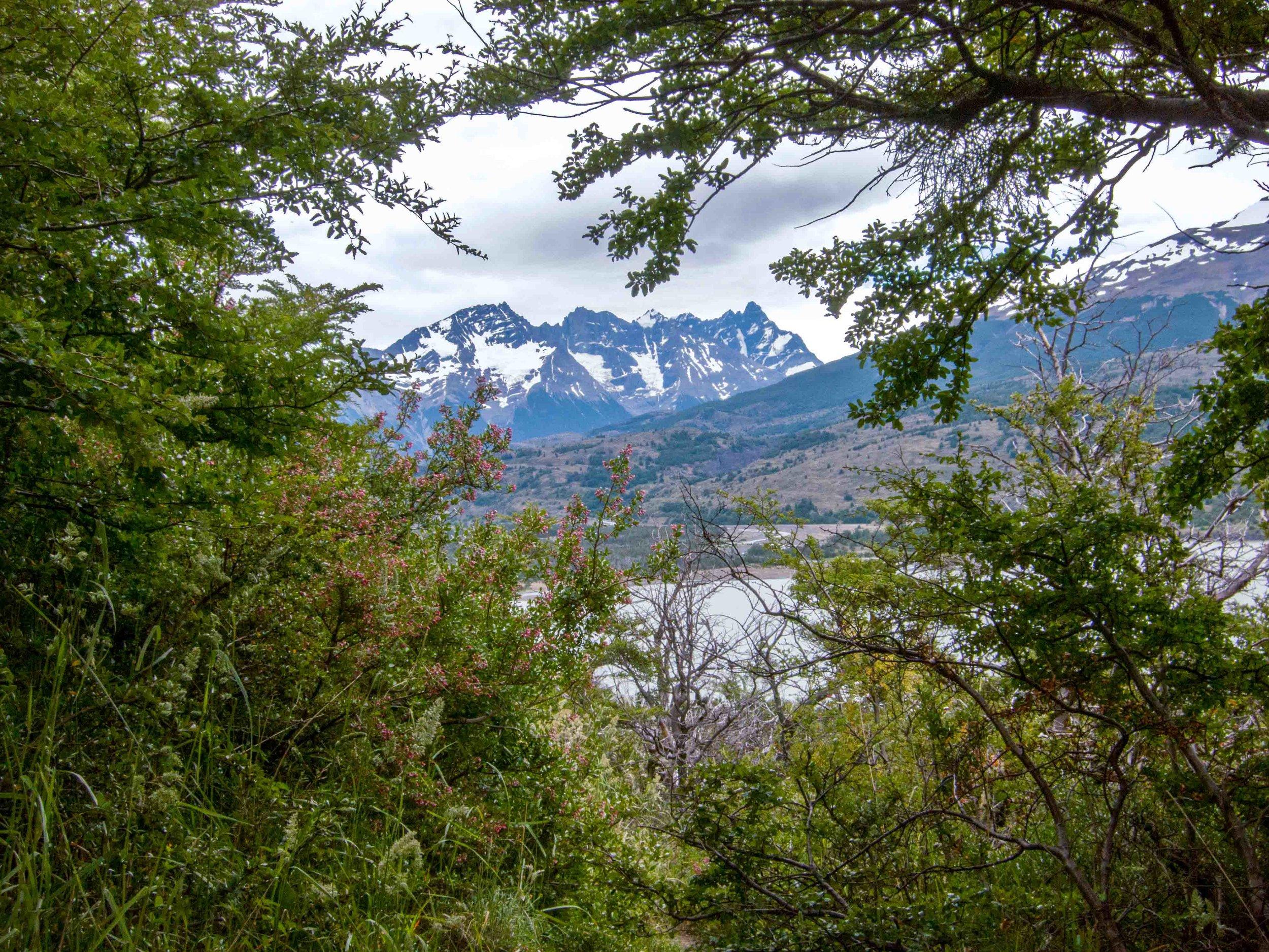 Patagonia WebSized-9.jpg
