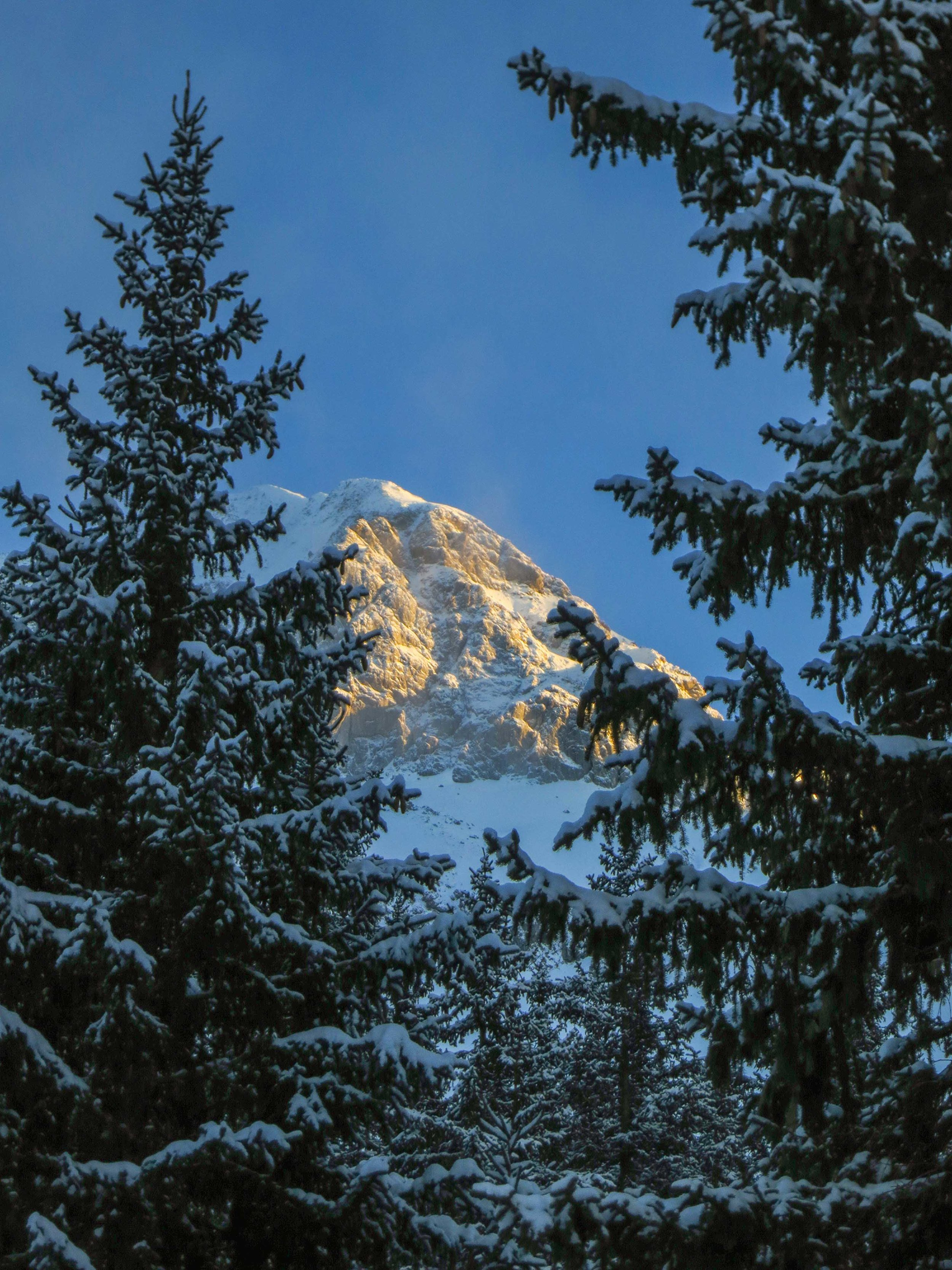 Austria WebSized-71.jpg