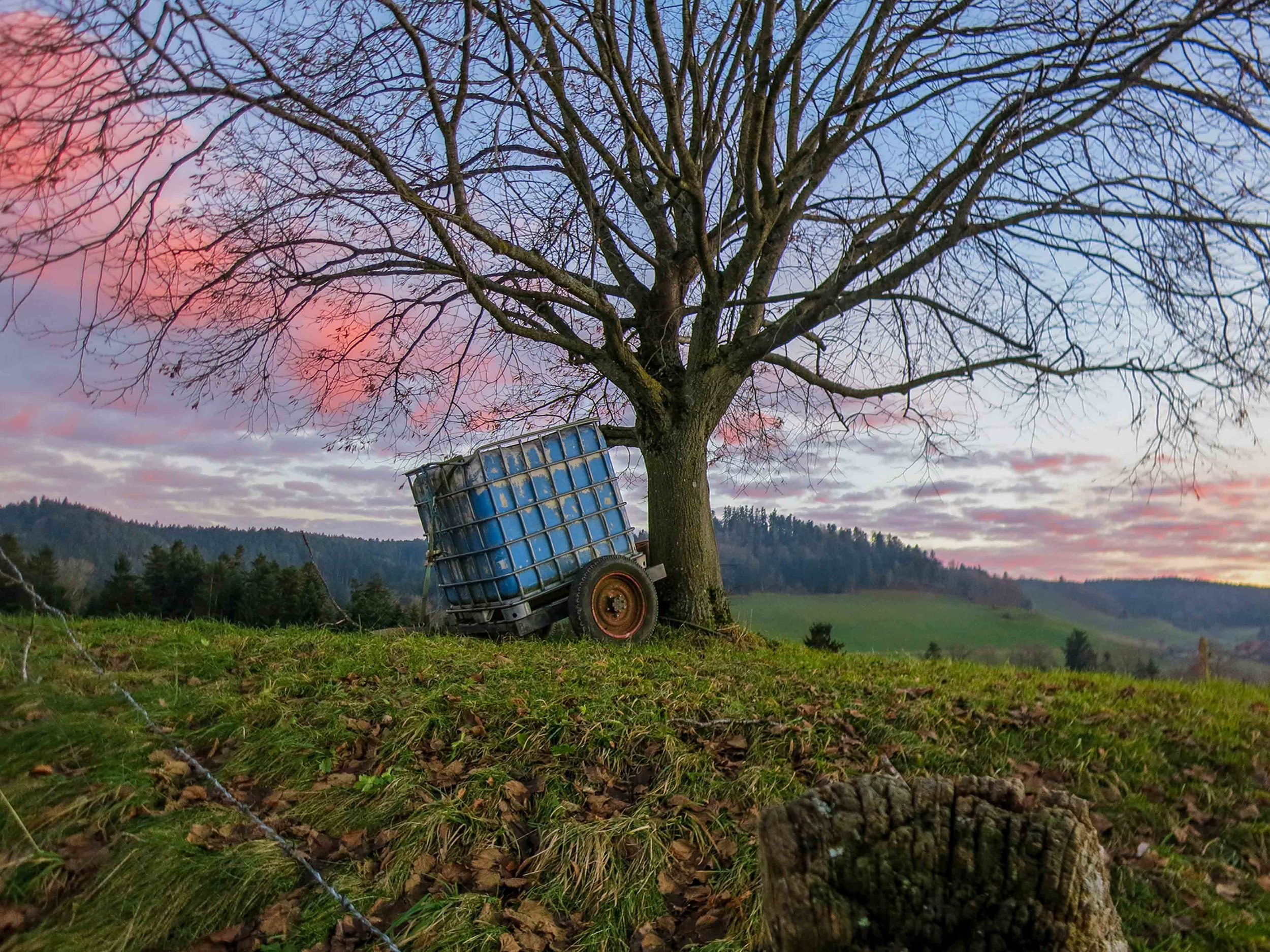 Austria WebSized-82.jpg