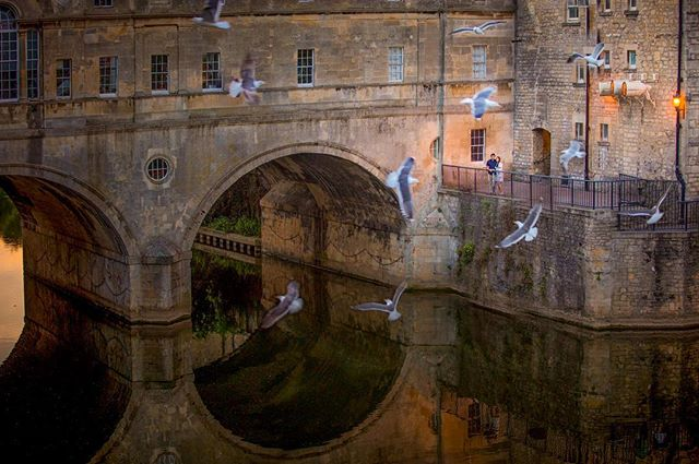 In response to a request regarding the previous post, here is a bigger view of the Pultney Bridge from @chandni.deb pre-wedding shoot setting in Bath.  The bridge is one of only four in the world to have shops across on each side. ————————————————————————- #wedphoto #indianwedding #photographer #seagull #preweddingshoot #preweddingphoto #preweddingphotography #weddinginspiration #wedding #weddingphotography #weddingphotographer #wedphotoinspiration #couple #indiancouple
