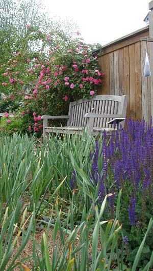 photo courtesy of Faulkner Literary Garden