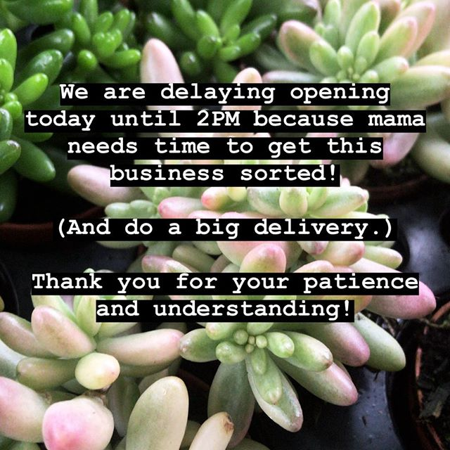 Stock up Saturday! Give us some extra time today if you planned on swinging by before 2pm! Thank you for your understanding and patience! xo - Chelsea