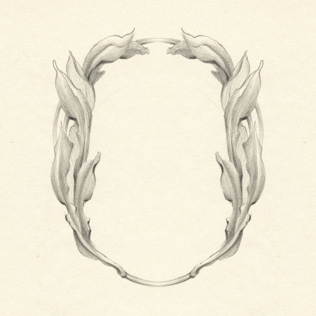 Botanical frame design, drawn by Laura Dreyer