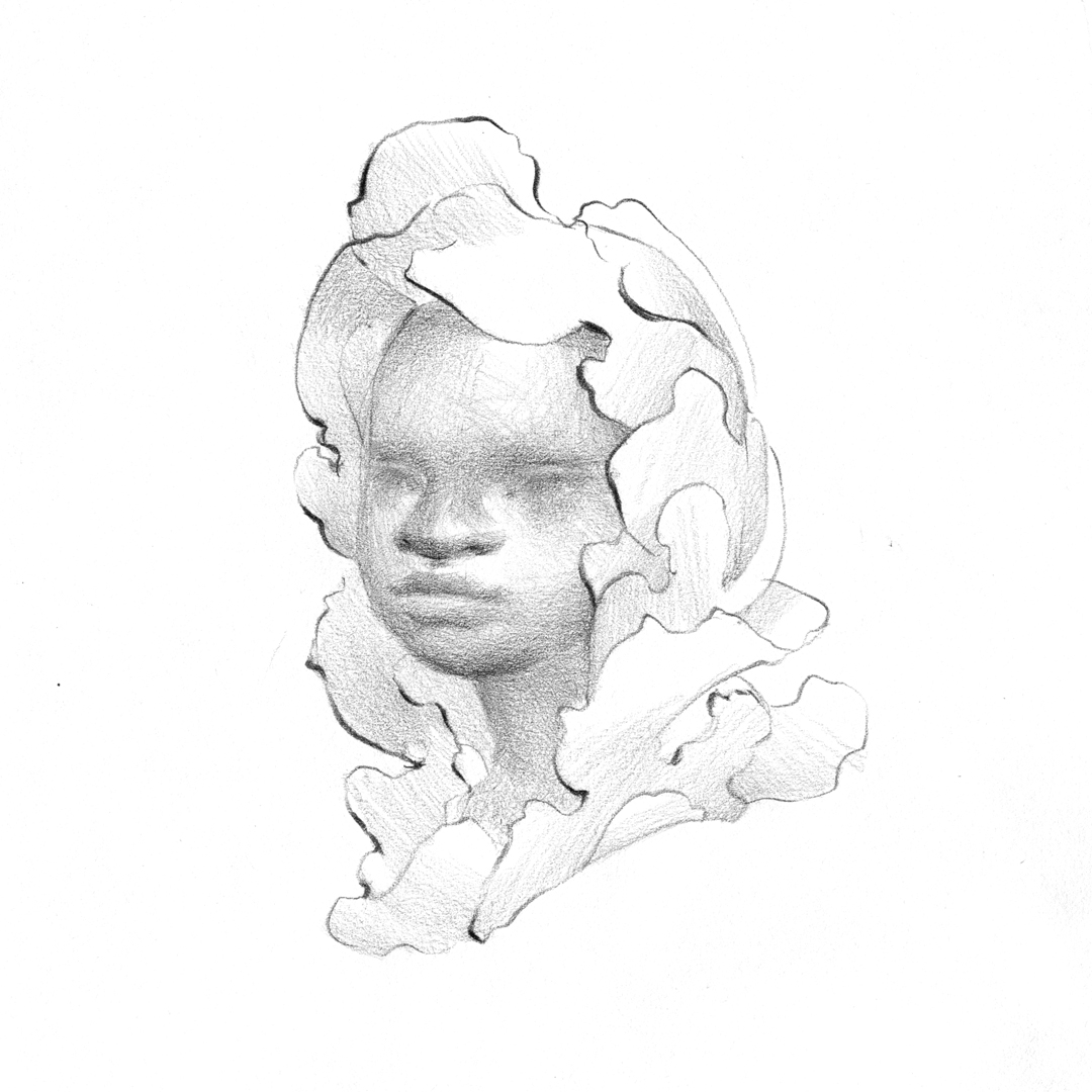 Dream Portrait by Laura Dreyer, drawing in pencil.