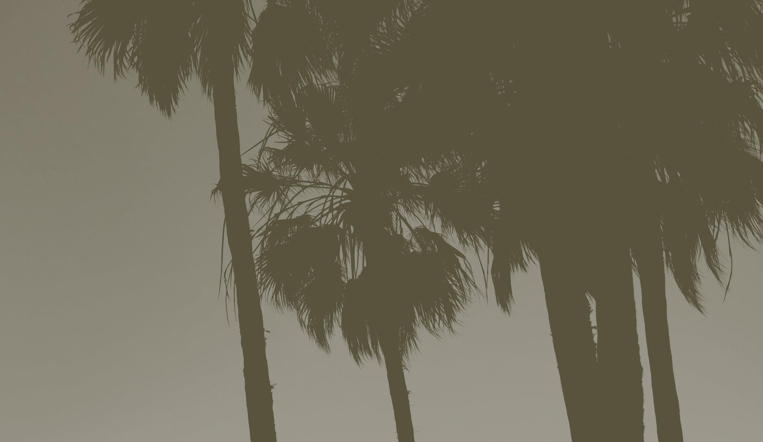 StoryChurch-Web-1.jpg