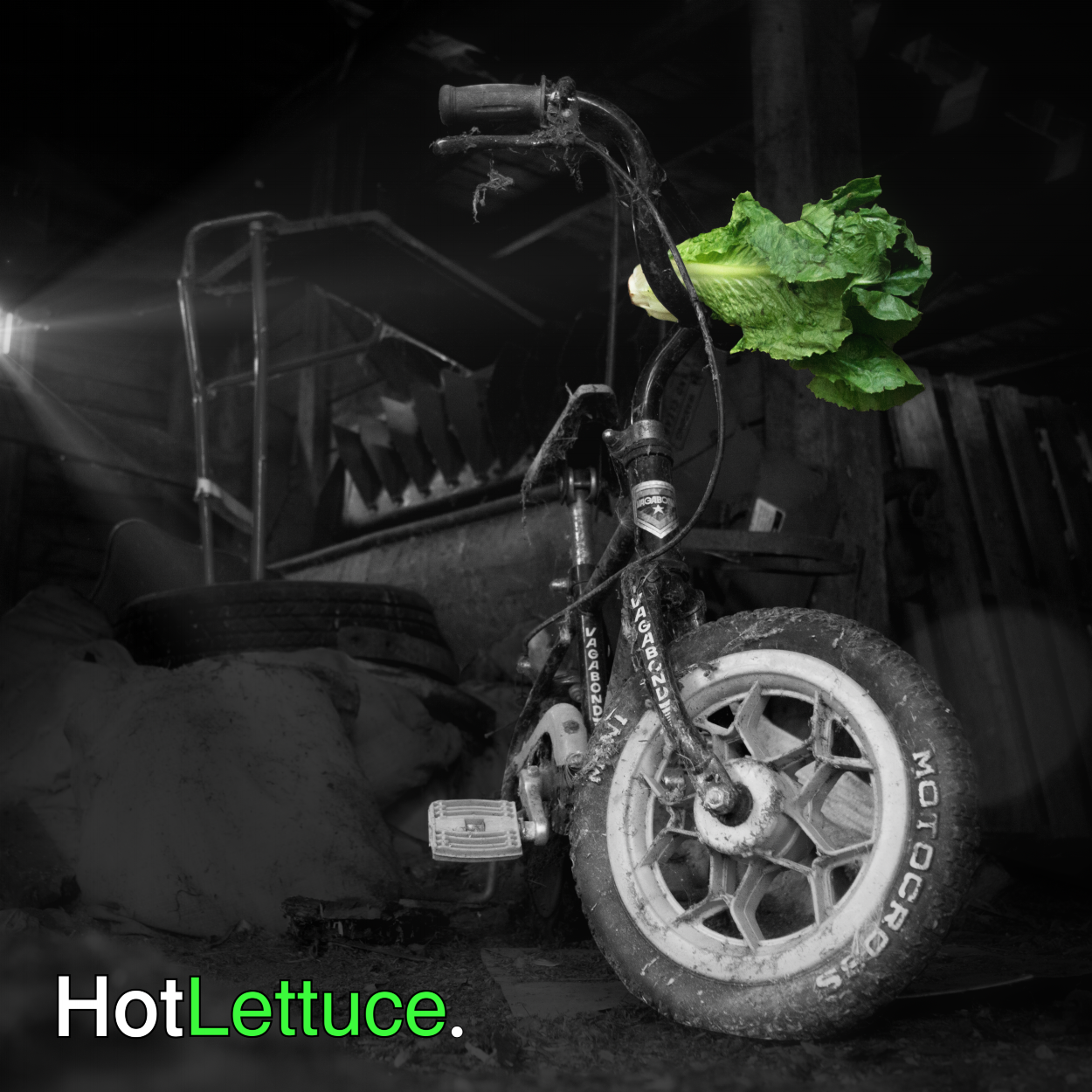 HotLettuceEP_Front_2.png