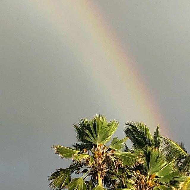 Tuesday morning! #rainbow #luckywelivekauai #farmlife #tuesday