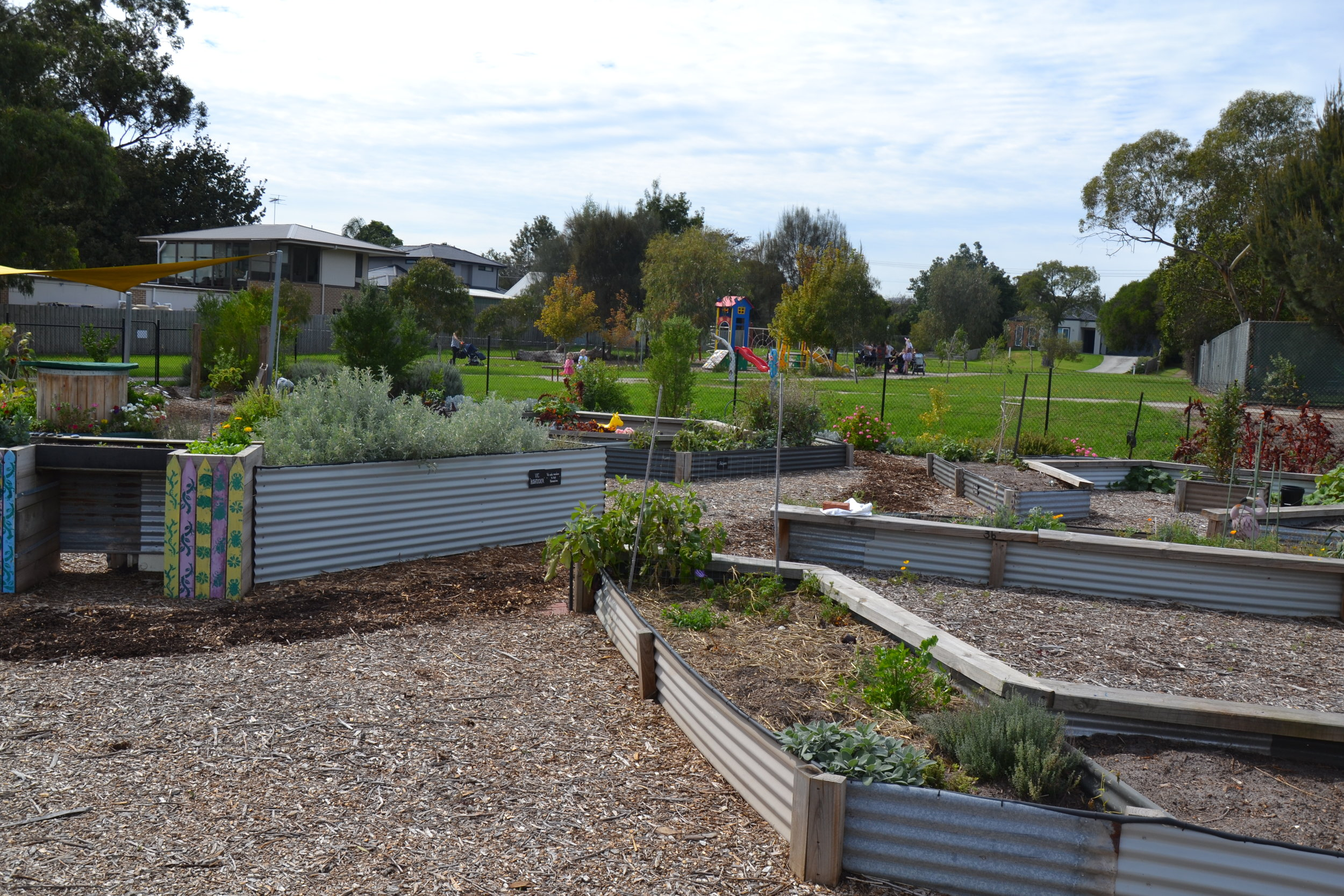 joy of the earth community garden -