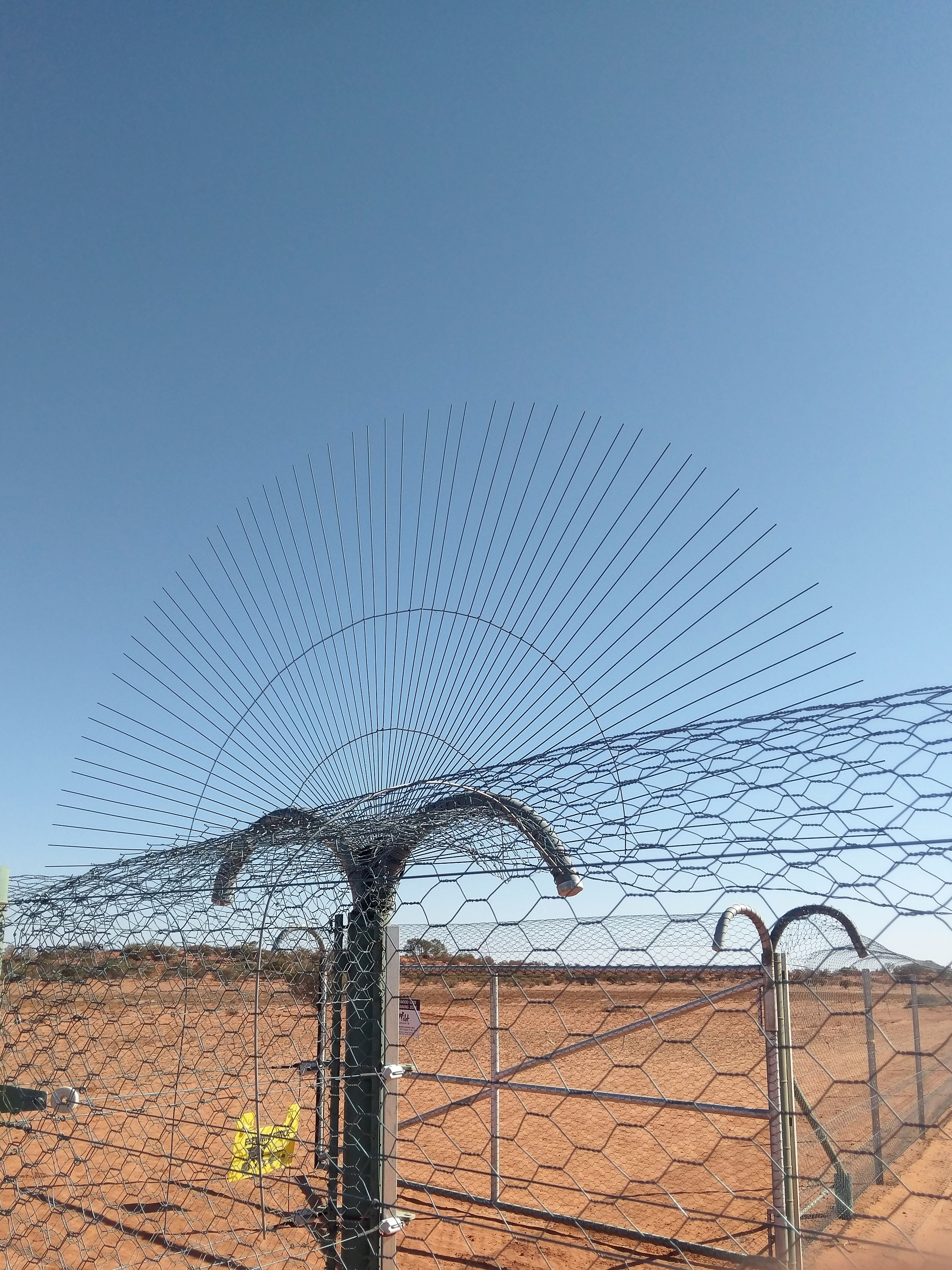 091 special guard at fence junction.jpg