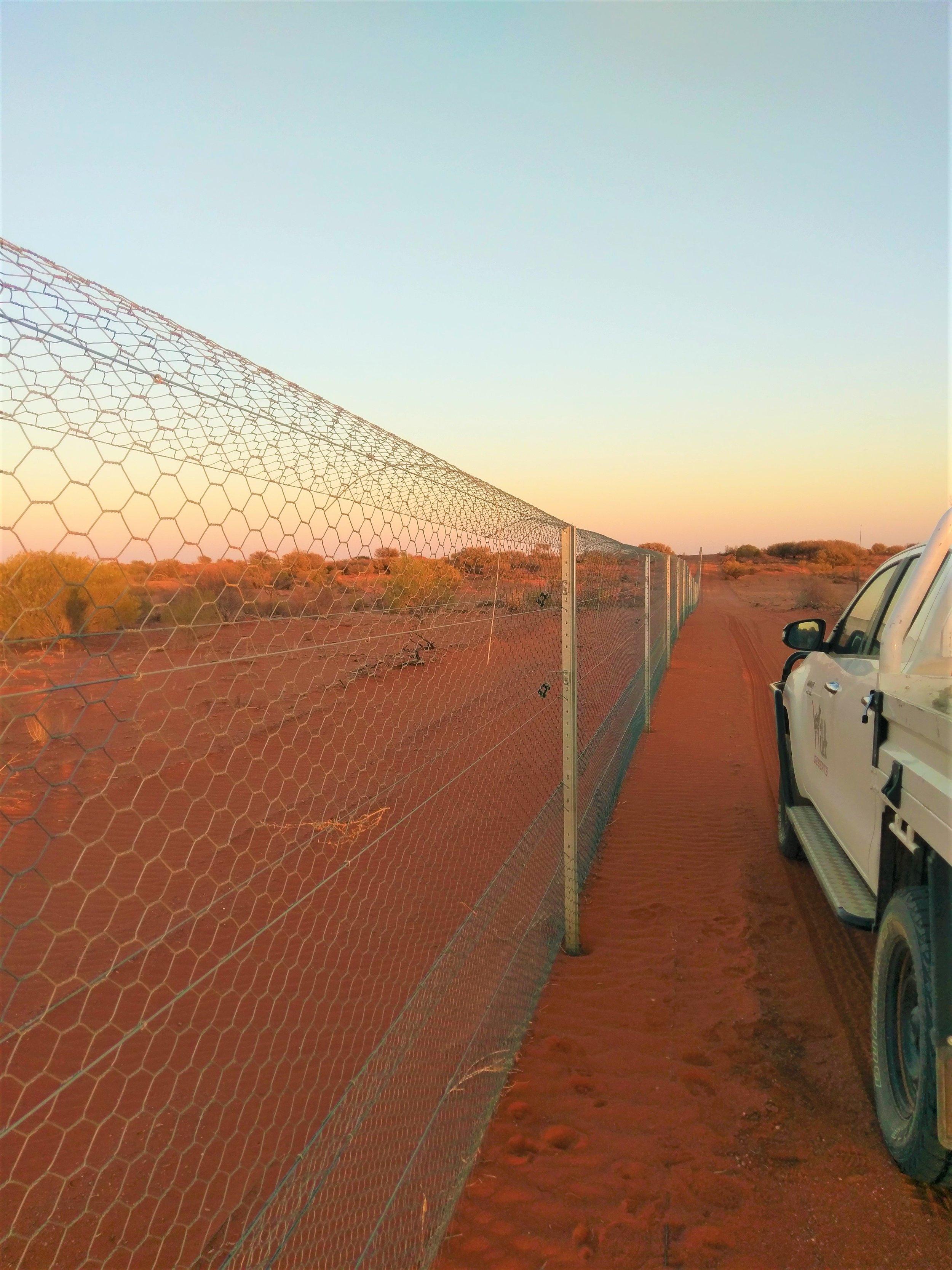 087 fence.jpg