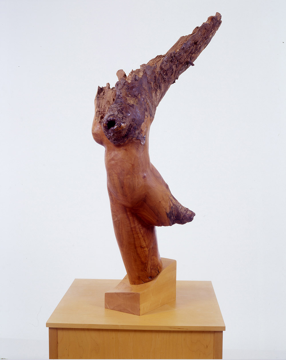 16.b-Ono-Victory-1996.-Apple-wood-129.5-x-68.6-x-35.6-cm-x.jpg