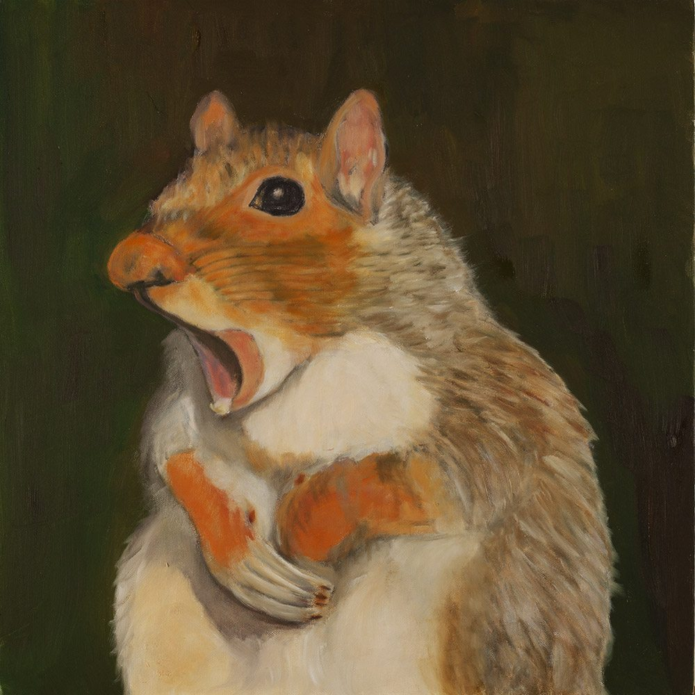 15.-Ono-Wow-Nuts-2015.-Oil-on-canvas-48.8-x-48.8-cm-x.jpg