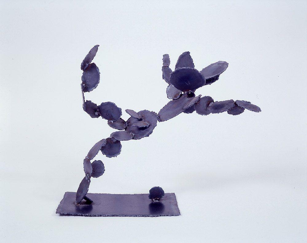 Flying Cactus, 1997