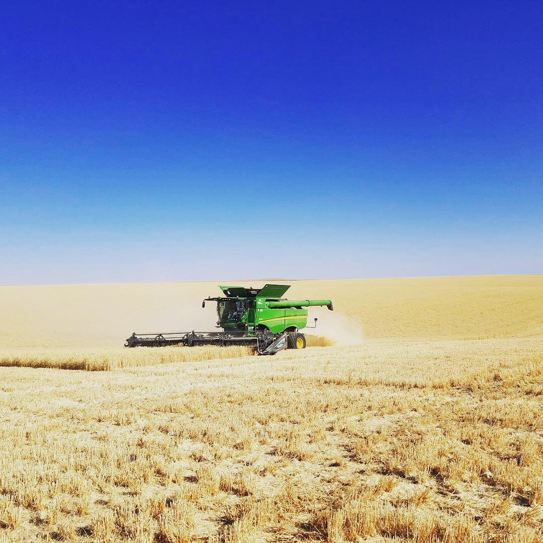Harvest this year with our new-to-us John Deere s680 with a 40 foot header.