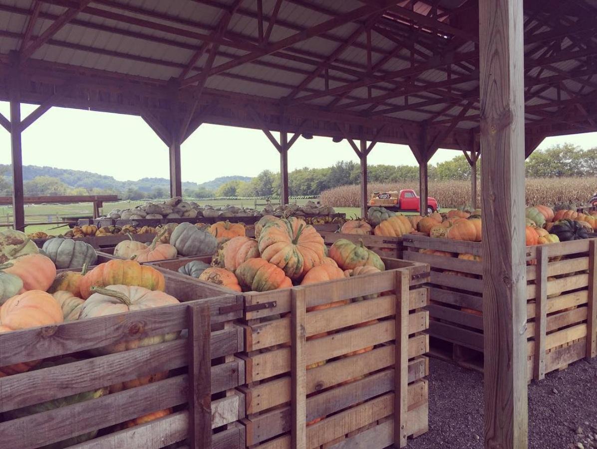 gentrys+farm.jpg
