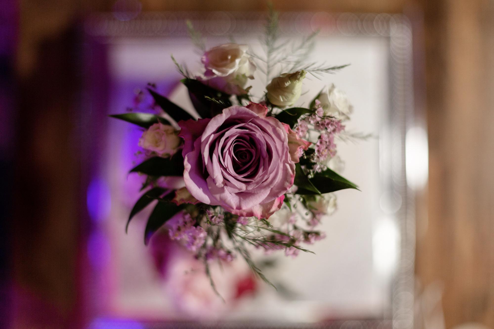 Sophie & Oliver - Wedding Blog Photos-117.jpg