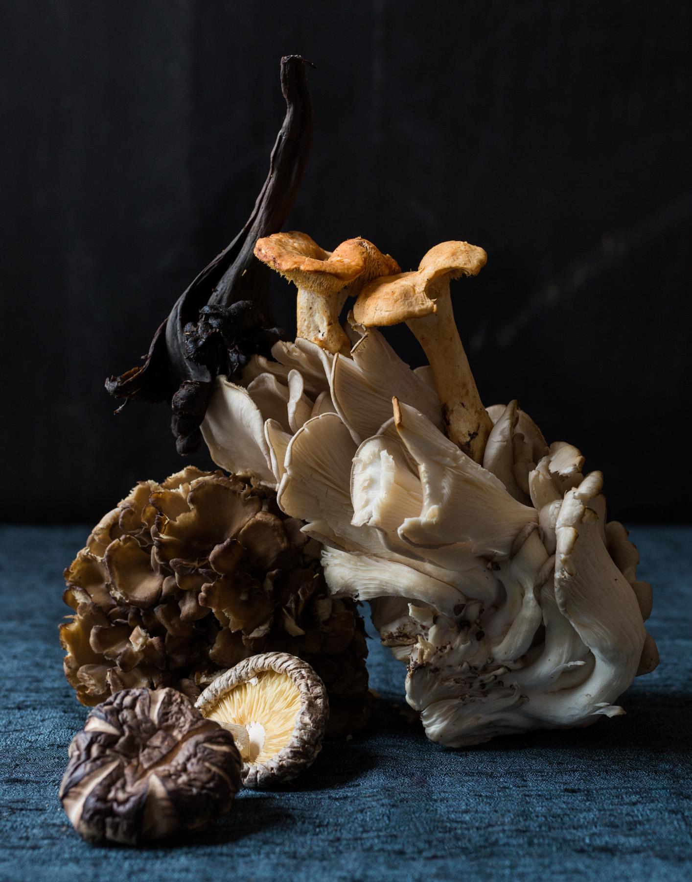 Mushroom-5.jpg