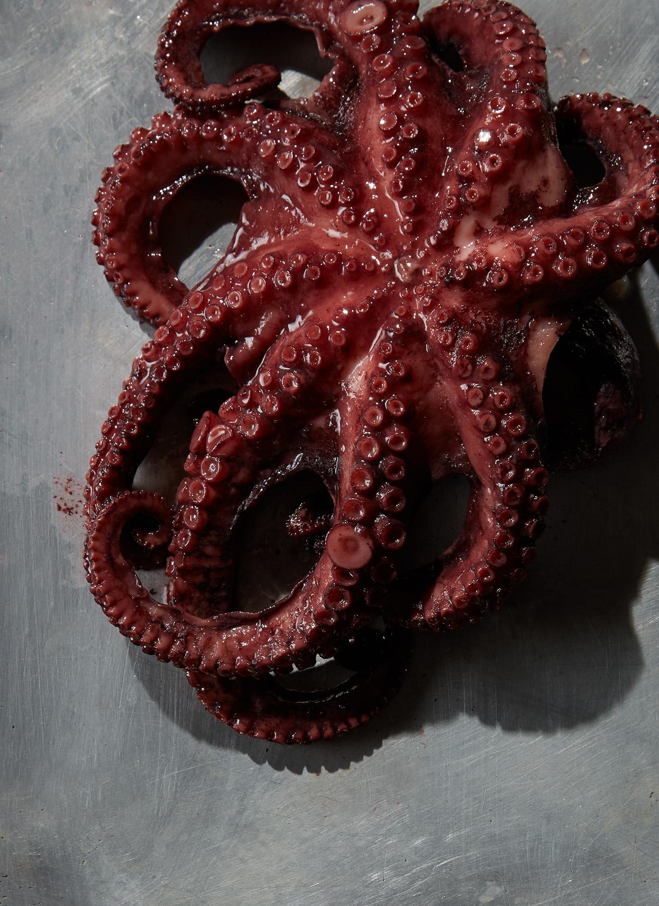170917-OctopusRaw-203.jpg