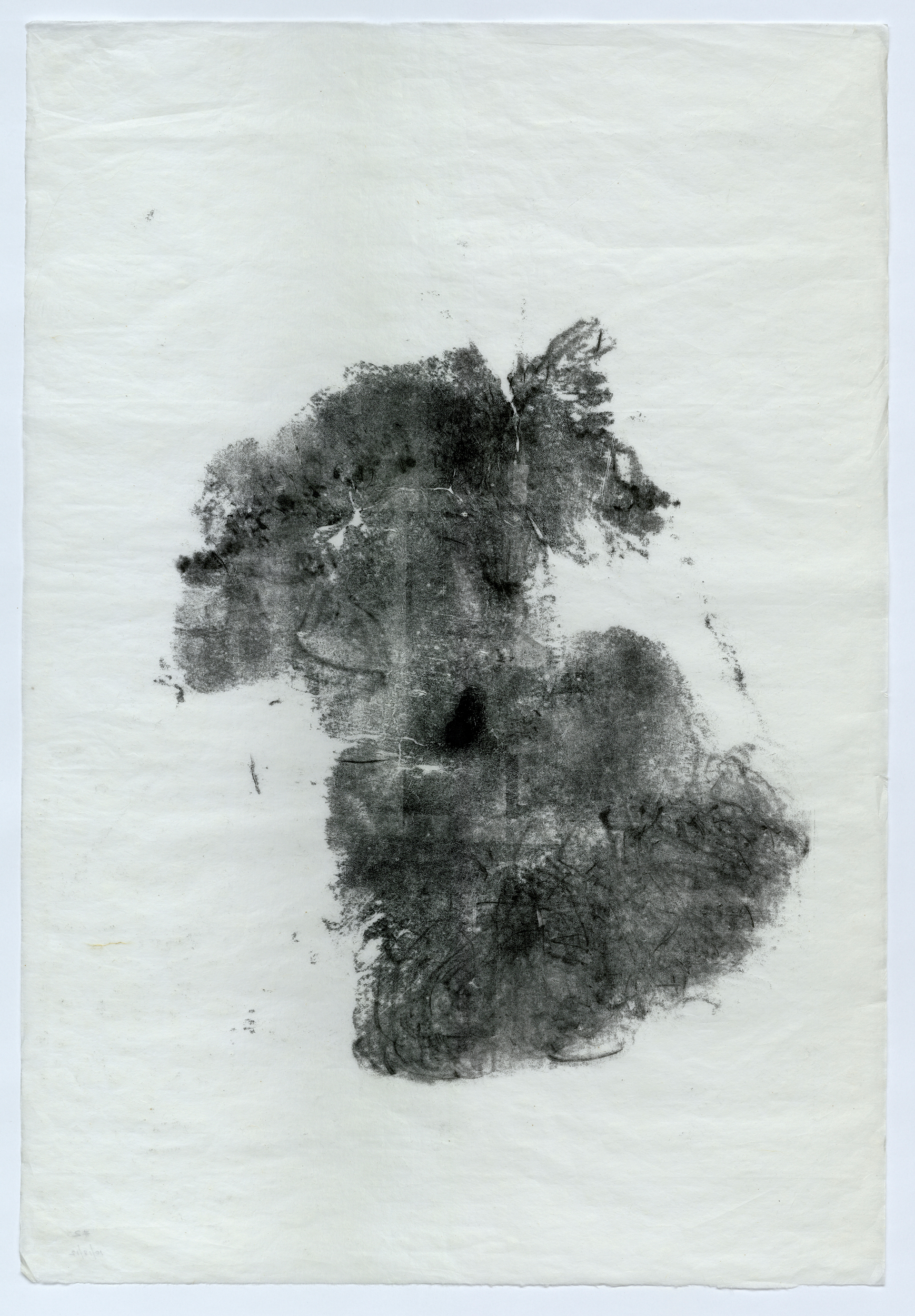 """Baby Clyde (11 weeks old) 37"""" x 25"""" handmade white Kozo (Mulberry) paper, unframed"""