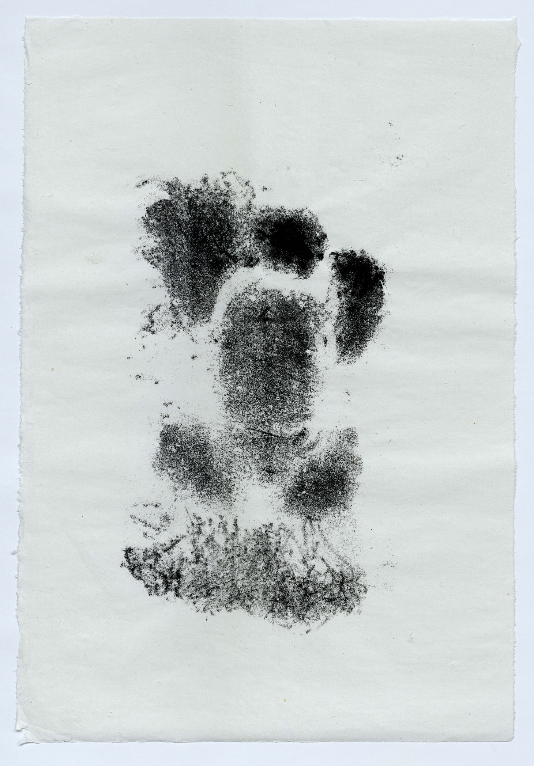 """Baby Clyde (16 weeks old) 37"""" x 25"""" handmade white Kozo (Mulberry) paper, unframed"""