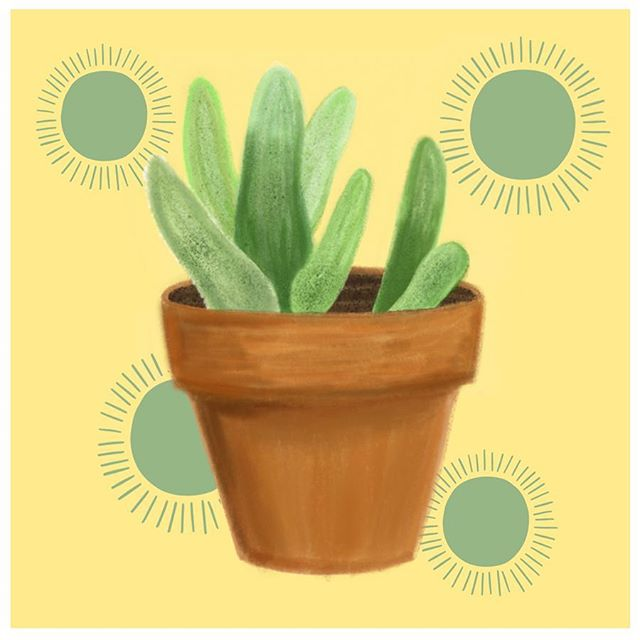 In honor of earth day being this week🌎 I made this (along with a few others) about a month ago and was so excited to post them and then life got in the way and I never did... story of my life! Does anyone else have so many things that they've made and then just never posted? So here's my little plant, swipe to see the process video🌞🌵 • • • • • #procreateartist #procreatedesign #ipadlettering #letteringcommunity #letteringco #letteringartist #letteringleague #goodtype #womenofillustration #strengthinletters #customhandlettering #motivationnation #letteringchallenge #letteringleague #calligrafriends #typism #letterbuilder #drunkonlettering #createdtoday #communityovercompetition #typematters #plantillustration #succulentillustration #procreateillustration #ipadillustration
