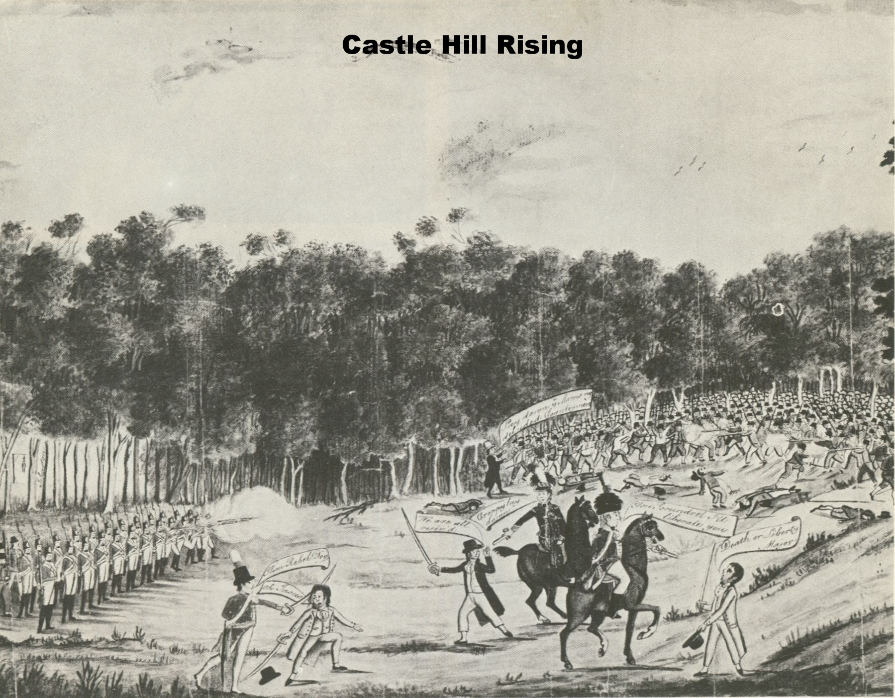 Castle Hill Rising