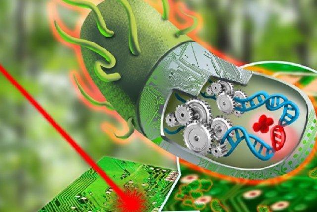 Synthetic-Biology.jpg