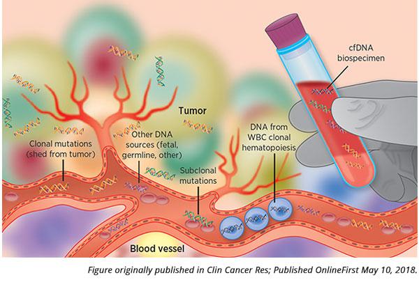 liquid biopsy.jpg