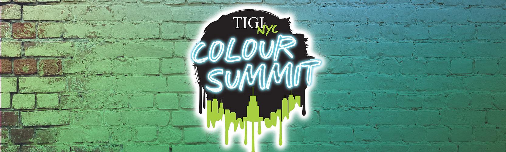 Colour_Summit_Brick_Bannerv2.jpg