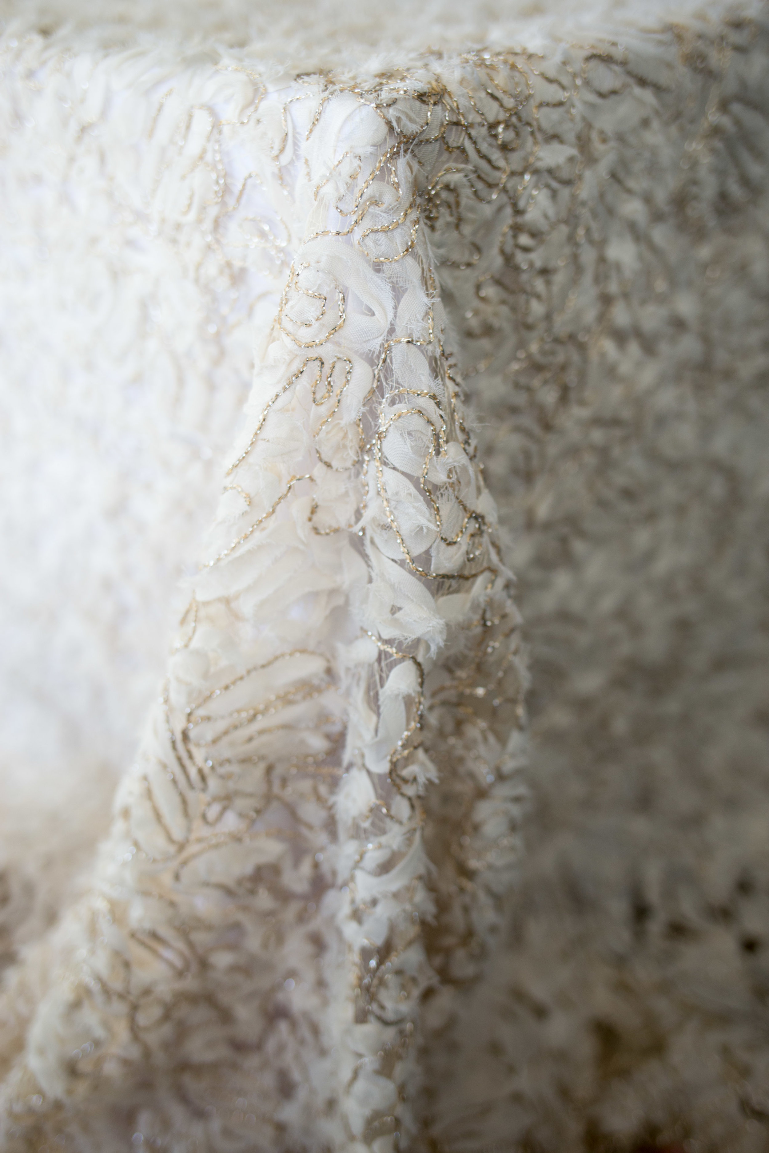 Tousled Lace 2.jpg